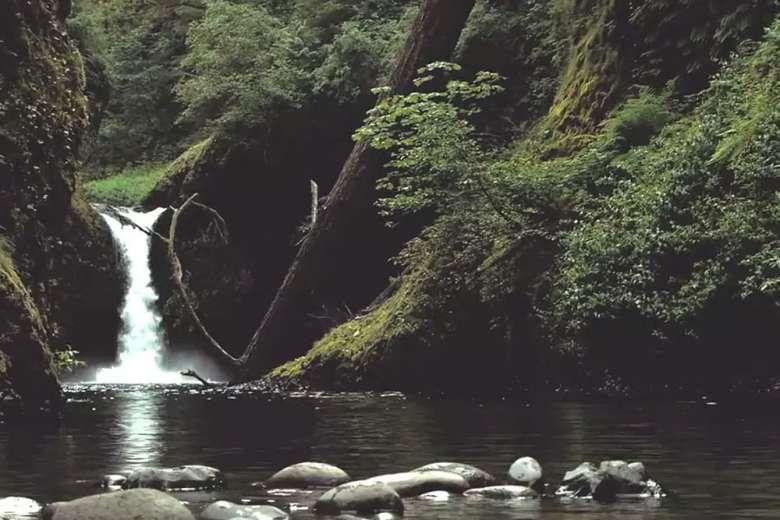 ロードトリップ(オレゴン州)