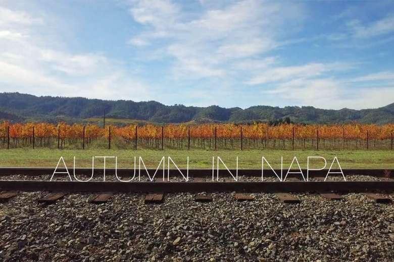 ニューワールドのワイン聖地、ナパ・ヴァレーにドローントリップ