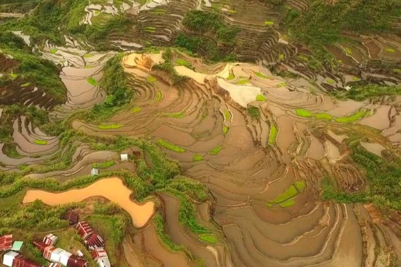 天国の階段と言われるフィリピンの棚田を空撮