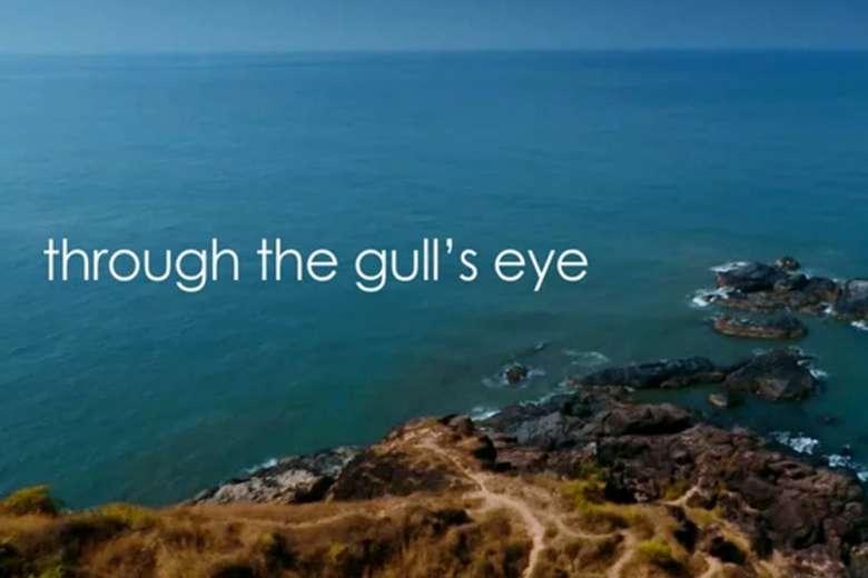 癒しの波音とともに、インド南部のビーチをドローントリップ